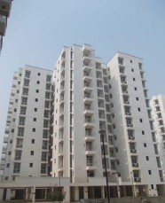 3 BHK  (1576 Sq. Ft.)